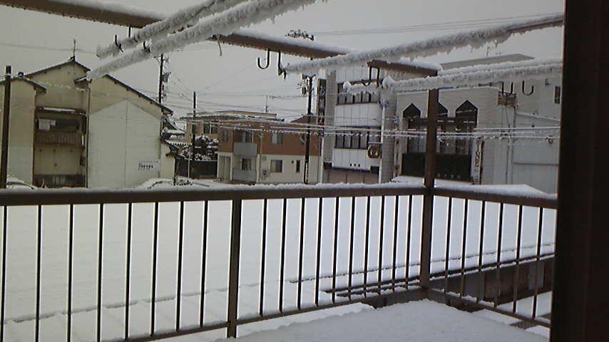 元旦は雪景色